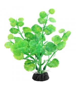 Растение пластиковое Щитолистник зелёный,10 см
