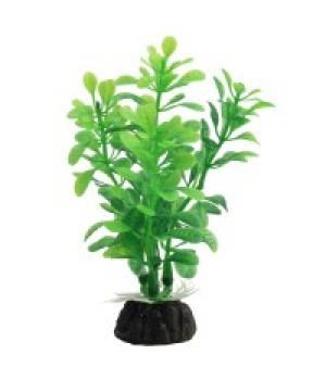 Растение пластиковое Альтернатера зелёная, 8 см