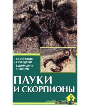"""""""Пауки и скорпионы""""Чегодаев"""