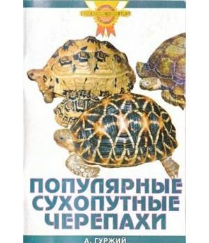 """""""Сухопутные черепахи"""" Гуржий"""