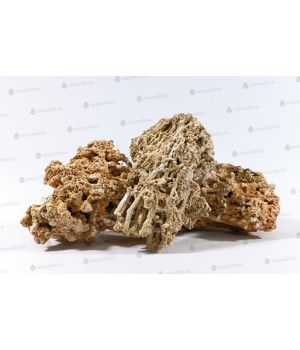 Камень Сухой морской (0,5-5кг)