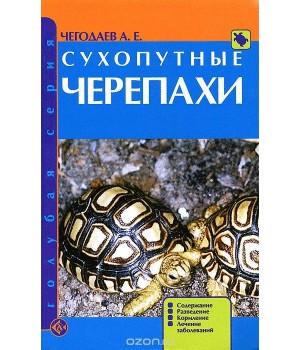 """""""Сухопутные черепахи"""" Чегодаев"""