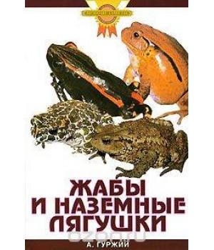 """""""Жабы и наземные лягушки"""" Гуржий"""