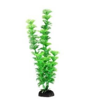 Растение пластиковое Амбулия зеленая, 30 см