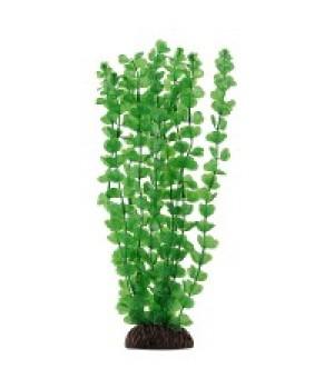 Растение пластиковое Бакопа зелёная, 20 см