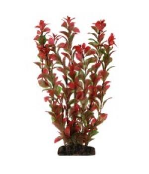 Растение пластиковое Людвигия красная, 30 см