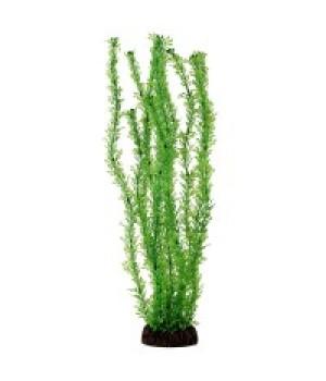 Растение пластиковое Лигодиум зелёный, 30 см