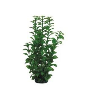 Растение пластиковое Людвигия зелёная, 30 см