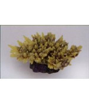 Декор из силикона Коралл жёлто-коричневый(мягкий) 14*11,5*6,5см