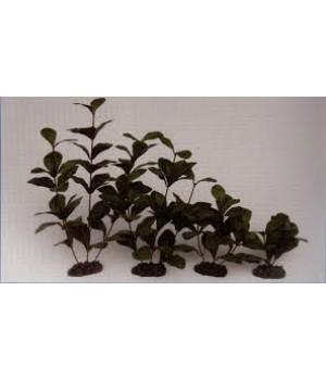 Растение шелковое PRIME Гигрофила 13см